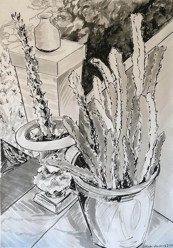 Gordon Williams Cacti on the stairs ink & charcoal on Fabriano 100 x 70 cm